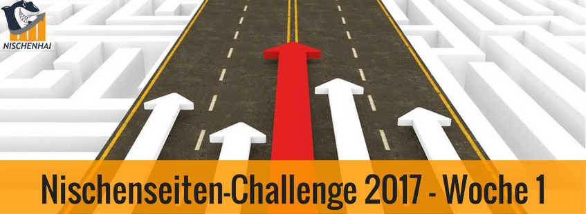 Nischenseiten-Challenge 2017 - Woche 1